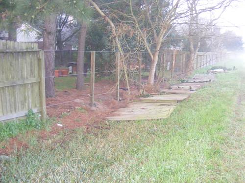 Back_Yard_Fence003.JPG
