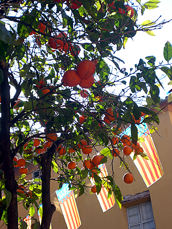 valencia-orange-flag