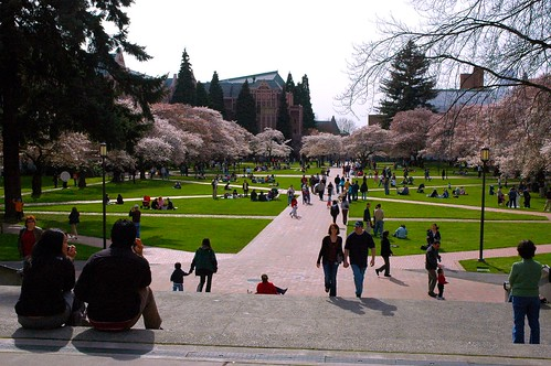 From the Music and Art buildings looking south through the inner courtyard University of Washington Cherry Colonnade Seattle Washington