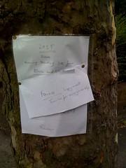 Feedback (Tom Insam (old)) Tags: exif:missing=true