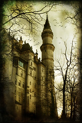 Fairytale Castle (Sarah Ann Wright) Tags: castle texture birds fairytale photoshop germany dark munich bavaria gothic neuschwanstein germancastle neuschwansteincastle fairytalecastle mywinners abigfave bavariancastle gothiccastle gothicfairytale munichcastle fairytalegermancastle gothictrees