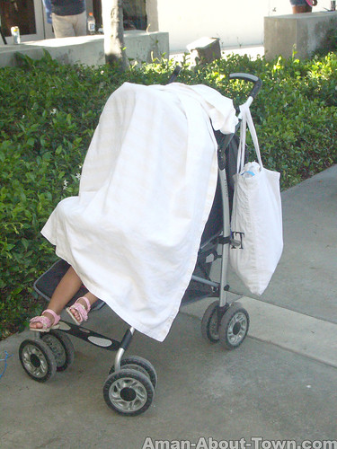 Summer Heat Baby Carriage