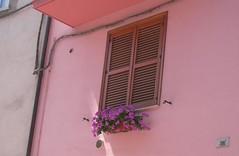 Sany0031 (alfiererosso) Tags: pink flores window ventana fenster rosa blumen lila finestra lilac lilla gerani rosafarben windowwithflowers finestrafiorita ventanaflorida