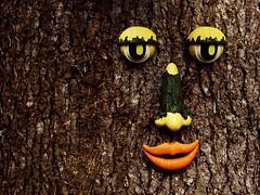 Faccia di legno (Studio Grafico EPICS) Tags: wood tree face mouth nose eyes occhi bark zucchini cazzo bocca naso corteccia zucchine finito zucchina servi gleba zucchino sbrot