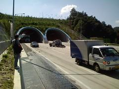 교통사고 - 06