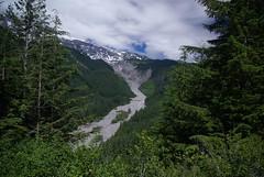2008-07-31 Mt Ranier (9)
