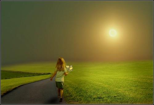 Una niña con unas flores en la mano camina hacia el sol entre la hierba