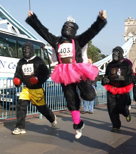 Ballerina gorilla