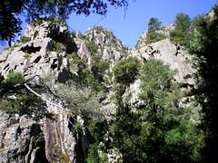 Ravin de la Sposata : arrivée vers la barre en haut du ravin (?) (Photo de Daniel le Crapahuteur)