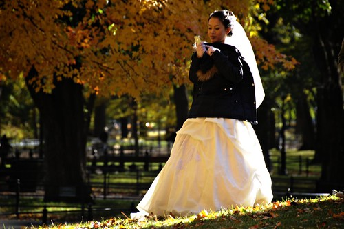 Manhattan Bride on a Thursday in Central Park