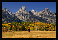 Farewell to Fall (James Neeley) Tags: autumn mountains nature landscape bravo searchthebest wyoming tetons grandteton grandtetonnationalpark gtnp jamesneeley