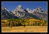 Farewell to Fall (James Neeley) Tags: autumn mountains nature landscape bravo searchthebest wyoming tetons grandteton grandtetonnationalpark gtnp jamesneeley