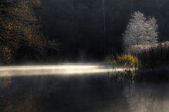 The Angel and the Dark River (diesmali) Tags: morning mist reflection river sweden sverige hdr stngn stergtland sturefors canonef100mmf28macrousm johanklovsj hofvetorp