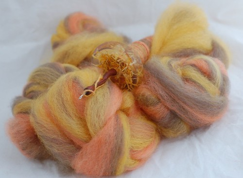 Calendulas fibre