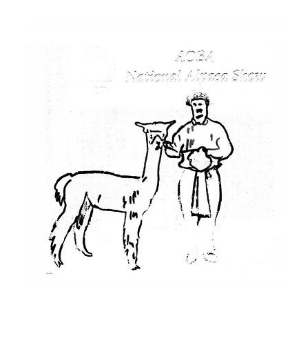alpaca by tinapaterson_dibujo