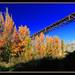 Puente de Dúrcal