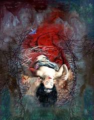 Sleeping Beauty promotional image for Scottish Ballet production