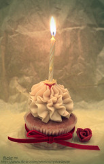 Happy Birthday =) (flickr ) Tags: red 2 flower yellow happy j flickr day you birth u  doha qatar 89    qtr          althani