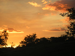 PR DO SOL NA FAZENDA <<>> ( SUNSET ON THE FARM ) (Opimentas) Tags: sunset sun tree sol brasil angel march photos farm uncle tag go prdosol bento arvore 2009 tio fazenda gois pimenta maro onofre talita novaaurora opimentas bhto
