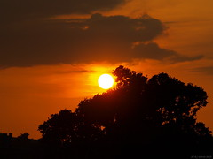 End of another perfect day (ExeDave) Tags: uk sunset england sky sun june landscape evening sundown devon gb 2009 starcross slightcrop teignbridge anawesomeshot moreorlessastaken