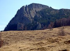 kőtitánok / piton (debreczeniemoke) Tags: landscape land piton transylvania grassland táj tájkép gutin erdély creastacocosului kakastaréj füvestáj sziklabérc