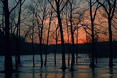 High Water Sunset (Chase Images) Tags: searchthebest soe supershot mywinners platinumphoto impressedbeauty theperfectphotographer qualitypixels