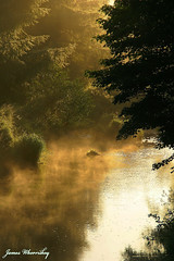 Hazy Shades Of Summer ! (James Whorriskey (Delbert Jackson)) Tags: uk trees ireland mist reflection water fog river dawn londonderry northernireland derry daybreak ulster claudy cumber sperrins faughan impressionsexpressions aroundus irishlight jameswhorriskey delbertjackson jameswhoriskey