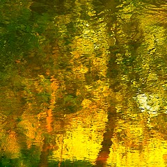 morning's gate on my wild river…!!! / porte du matin sur ma rivière sauvage…!!! (Denis Collette...!!!) Tags: morning wild canada reflection tree river gate quebec rivière reflet québec porte collette arbre denis matin sauvage portneuf blueribbonwinner firstquality wildriver imagepoetry deniscollette pontrouge rivièresauvage world100f goldenvisions