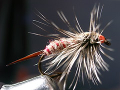 Mosca (aletdf) Tags: fly flyfishing trout pesca mosca