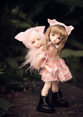 the kitty-back ride ({amanda too}) Tags: pink fern yellow beige dolls alice kitty lea bjd abjd tuesdayschild latidoll lati amandakeeysphotography rosenlied