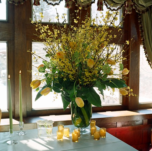 Tall arrangement, Wedding Table Flowers French Tulips and Forsythia with aspedistra leaves
