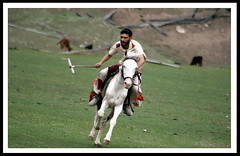 """""""dedicate to asim bhai""""even with hand made sticks we can defeat to any team of the world  in fariy meadow (TARIQ HAMEED SULEMANI) Tags: pakistan horse mountains culture riding polo fairymeadow supershot golddragon valleysofpakistan tariqhameedsulemani"""