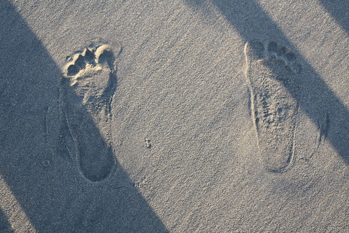 Footprints on the 4th
