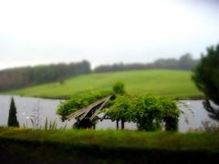 Field near Leeds Castle (hupspring) Tags: trees england green field kent leedscastle riverlen