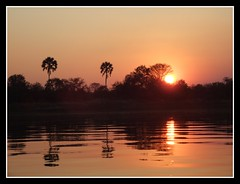 Sunset at the Zambezi River (Willyfog37) Tags: africa sunset ro river atardecer zimbabwe zambia zambezi zambeze zambeziriver