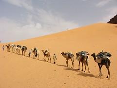 www.desertconvoy.9f.com (Djanet Desert Convoy) Tags: travel desert tuareg voyages djanet desertconvoy