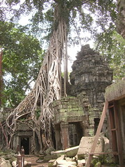 2007_0913_60_Angkor