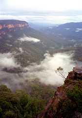 blue mountains (kickstock) Tags: mist clouds nationalpark bluemountains valley stockphoto megalong redsandstone stockimage