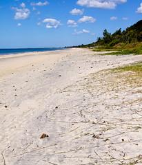 Mozambican beach