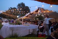 Grace & Joel's Wedding