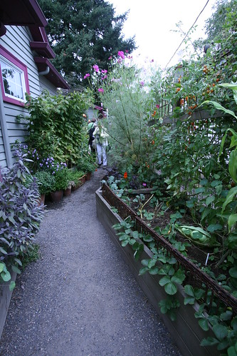Kitchen garden at Bloomtown garden in Portland