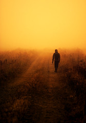 Walking To The Unknown (Joni N) Tags: road orange mist yellow fog warm pentax aficionados sigma105 k10d pentaxk10d