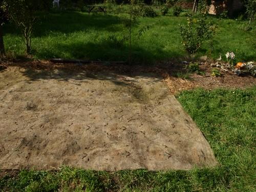 the carpet mulch