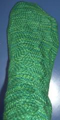 Dunegrass foot
