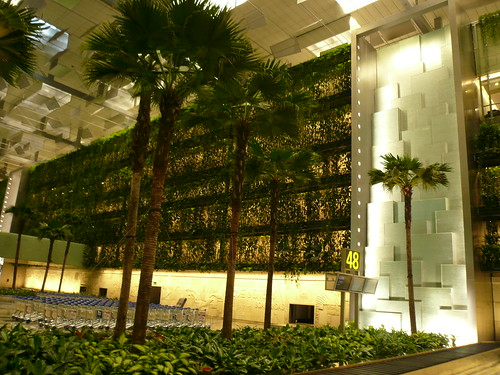 blog voyage travel aeroport singapour cascade changi airport whv