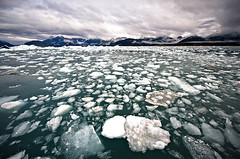 (navid j) Tags: snow cold ice nature water alaska landscape frozen earth glacier arctic freeze fv10 sheet valdez icefield columbiaglacier princewilliamsound