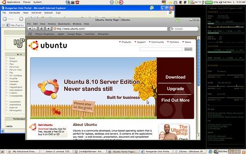 "Ubuntu 8.10 ""Intrepid Ibex"""