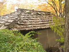 IMG_0541 (blue.tengu) Tags: korea seoul folkvillage suwon