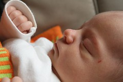 Ava, 13 dagar gammal