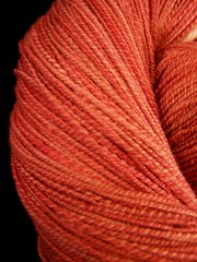 strawberry rhubarb yarn closeup